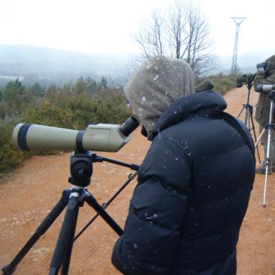 telescopio2